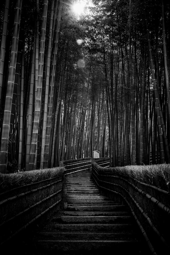 Arashiyama bamboo forest, Kyoto, Japan, 2015.
